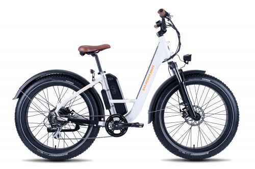 Rad Power Bikes' newest model is the RadRover Step-Thru fat e-bike.