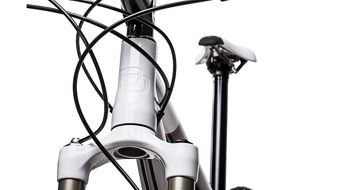 The titanium bike features an engraved headtube.