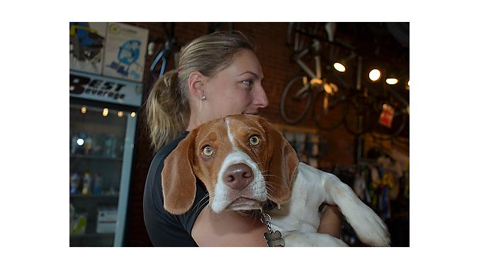 Karen Muehl, wife of Uptown Cycles owner Chris Sheehan, snuggles with Wallace, one of the retailer's two shop dogs. Wallace entertained the Dealer Tour crew with his playful antics during our visit Monday.