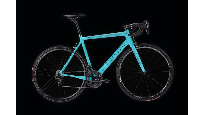 The Specialissima in Celeste Fluo.