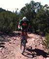 The author on Santa Fe's Dale Ball trail Wednesday. Photo: Steve Frothingham